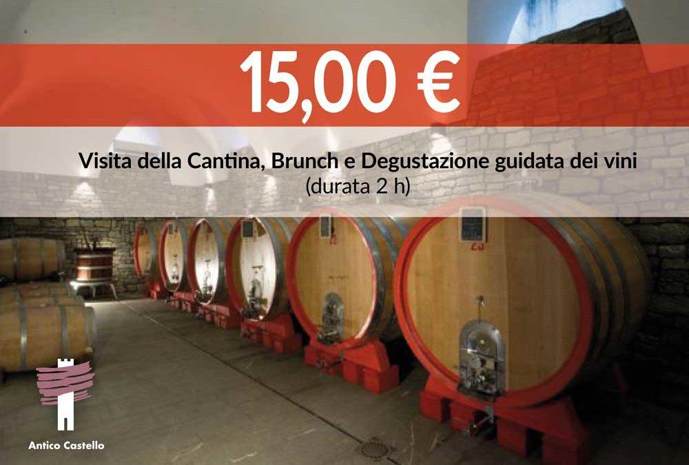 Visita della Cantina, Brunch e Degustazione 15 €