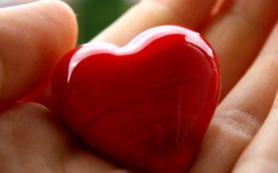 Pillole di vino rosso per il cuore