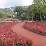 euroflora-ev