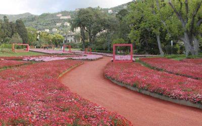 Successo per la floricultura campana ad Euroflora 2018