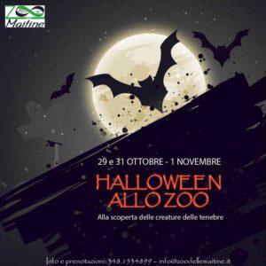halloween allo zoo