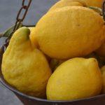 limoni gooty