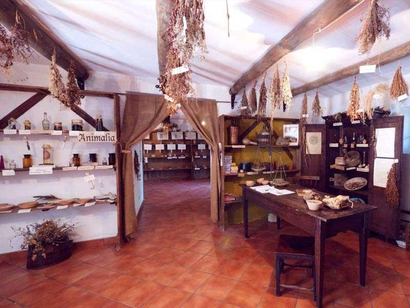 museo erbe