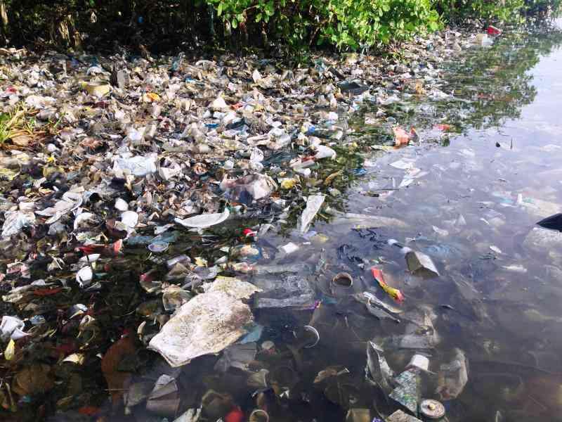 Parte la raccolta fondi a sostegno del Word Cleanup Day, per ripulire il mondo dai rifiuti